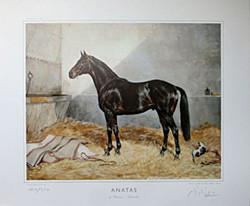 Anatas by Priamos-Anatevka
