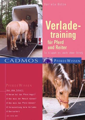 Verladetraining für Pferd und Reiter