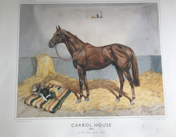 Carrol House (IRE) by Lord Gayle (USA) - Juna