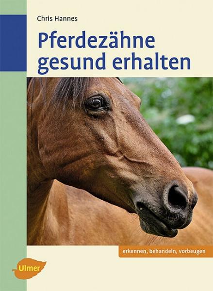 Pferdezähne gesund erhalten