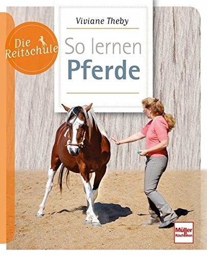Die Reitschule So lernen Pferde