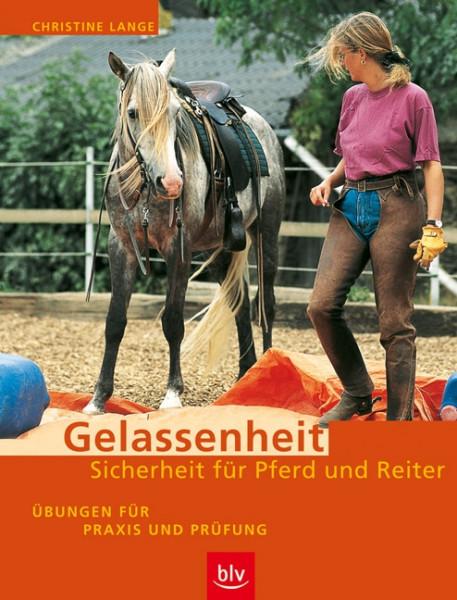 Gelassenheit-Sicherheit für Pferd und Reiter
