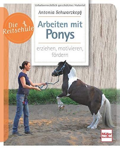 Die Reitschule-Arbeiten mit Ponys