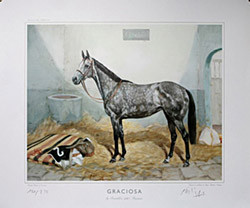 Graciosa by Pentathlon (GB)-Gracieuse