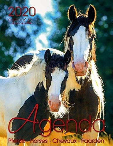 Agenda Pferd 2020