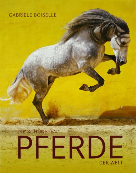 Die schönsten Pferde der Welt