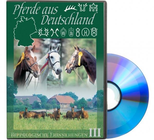 Pferde aus Deutschland