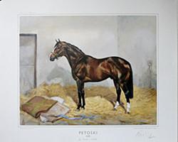Petoski (GB)-by Niniski-Sushila