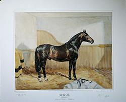 Jugol (WÜRTT) Julmond (TRAK)-Goldblume