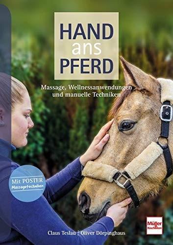 Hand ans Pferd